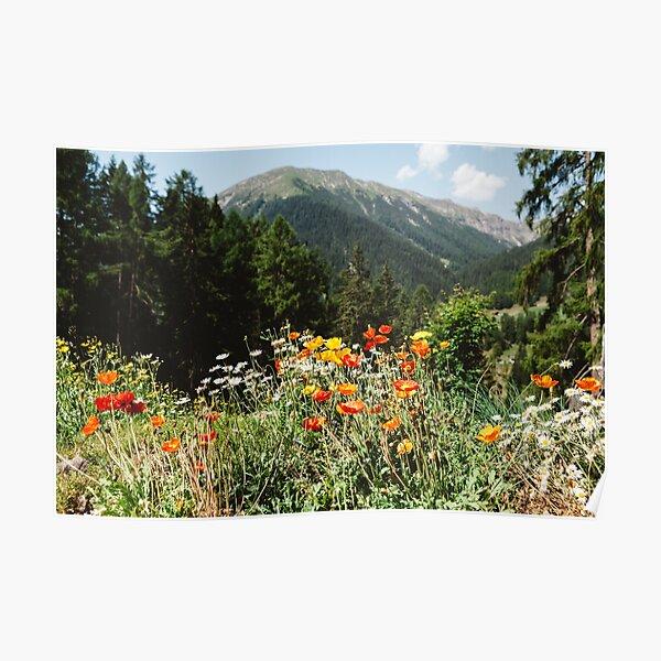 Jardin de montagne Poster