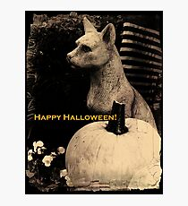 Gothic Cat Guards Pumpkin Photographic Print