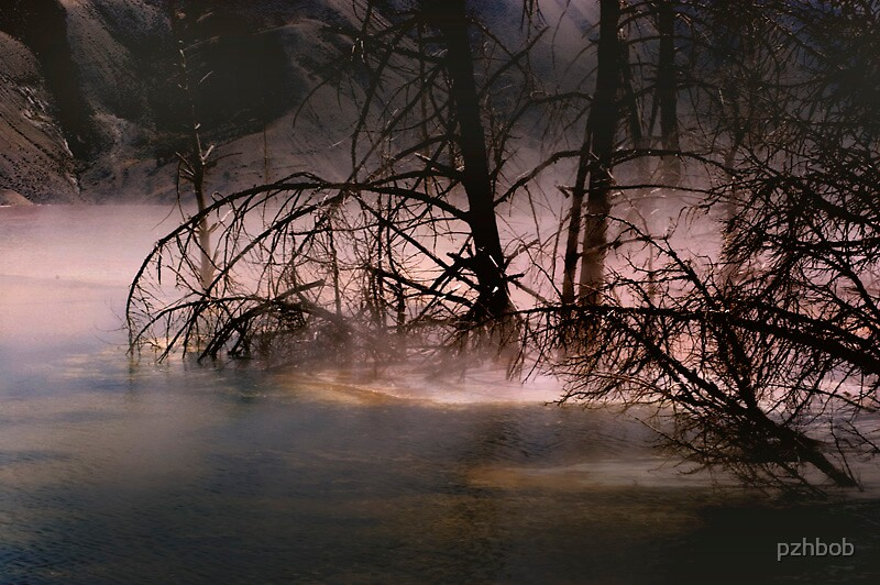 The Mist Mammoth hot spring by pzhbob