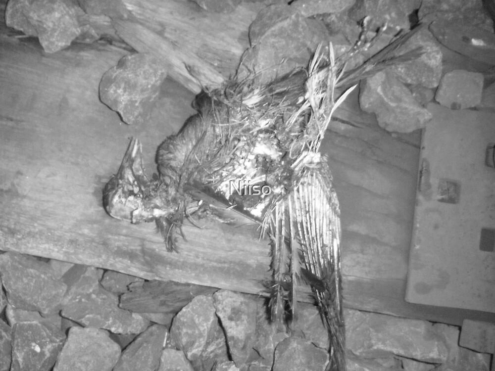 OLD DEAD  by Niiso