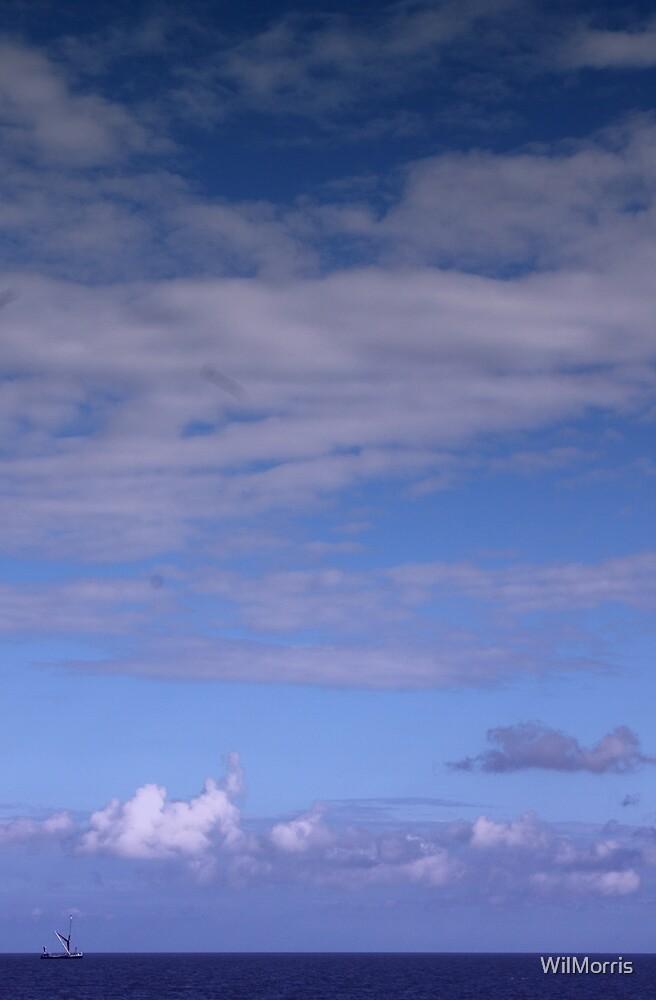 Wide Open Skies by WilMorris
