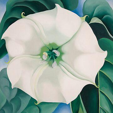 Georgia O'Keeffe White Iris Drucke von simonZan