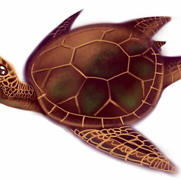 Flying turtle by freger