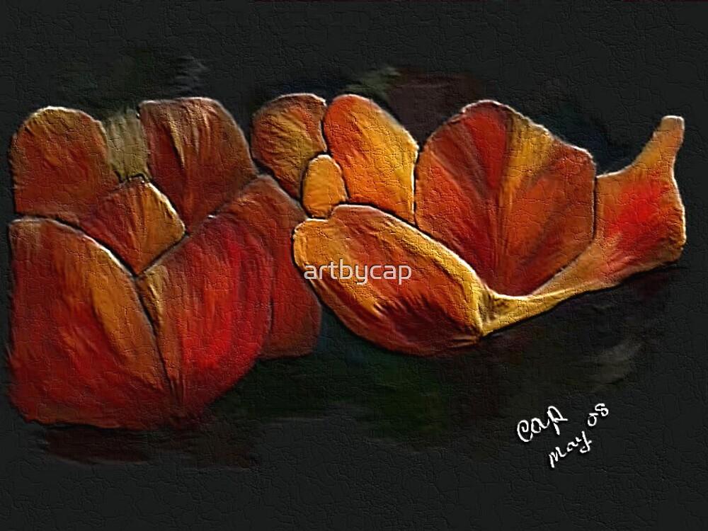Orange Tulips by artbycap
