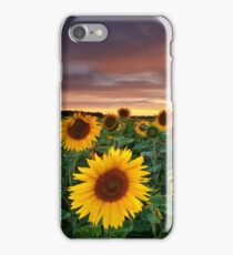 Here comes the Summer iPhone Case/Skin