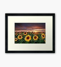 Here comes the Summer Framed Print