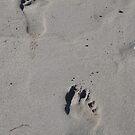 Feet by lezvee