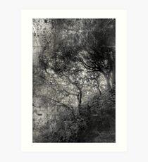 Oblique Art Print