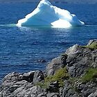 Newfoundland Iceberg by Photography  by Mathilde