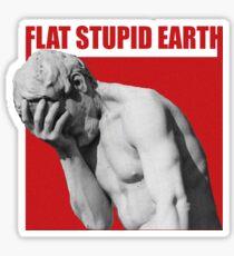 stupid flat earth  Sticker