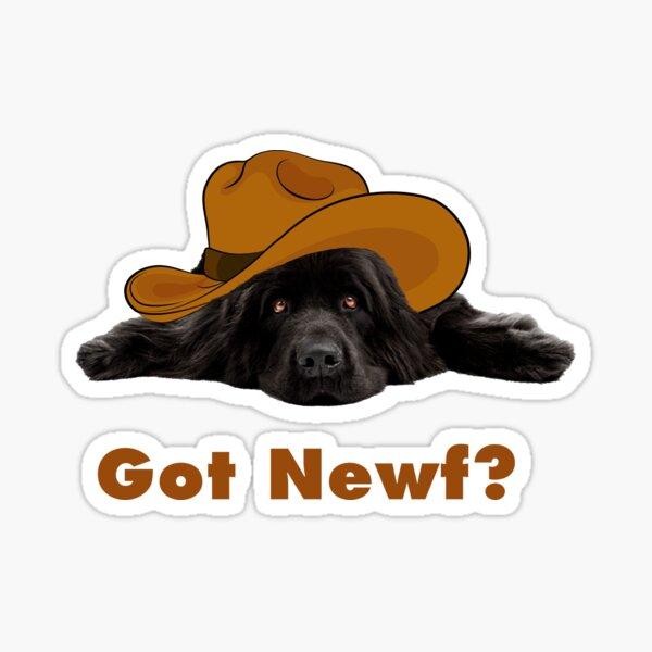 Got Newf?  Sticker