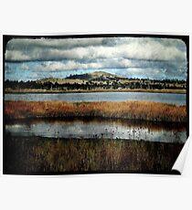 The Birdwatching Hut - Dangars Lagoon, Northern Tablelands, NSW, Australia Poster