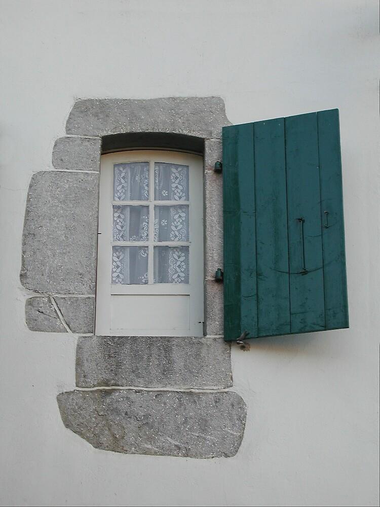Set in Stone by Tom  Reynen