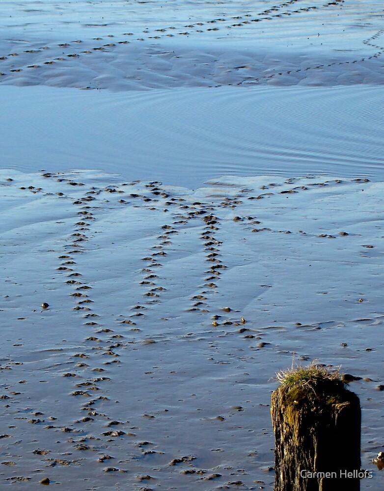 Footprints  by Carmen Hellofs