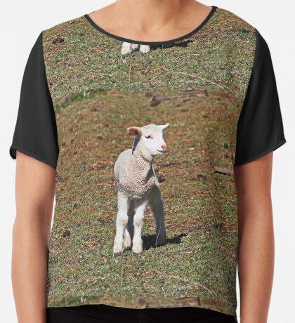 Kleines Lamm verloren Chiffontop für Frauen