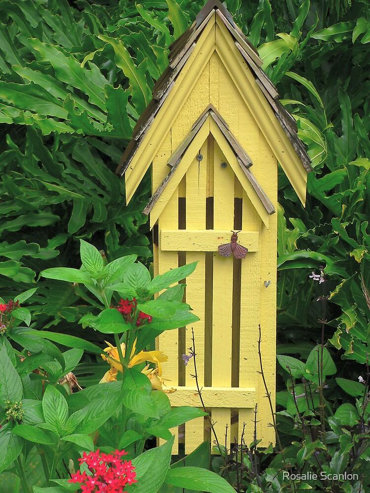 Butterfly House by Rosalie Scanlon