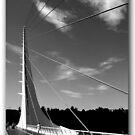 Sundial Bridge by Nikki Collier