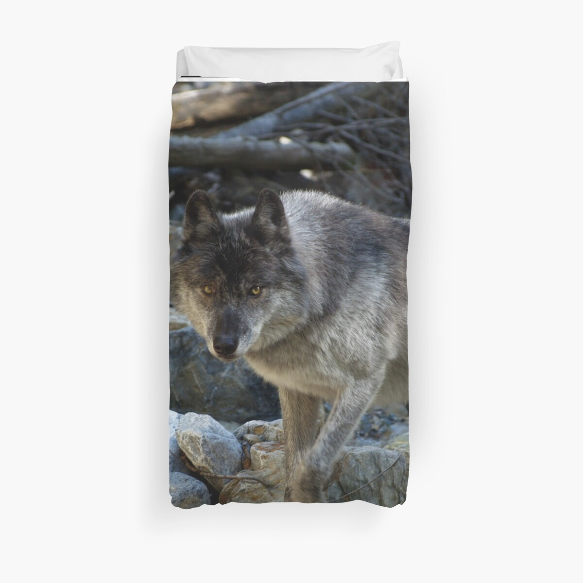 """Vision Quest""  Grey Wolf by NaturePrints"