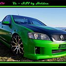 Ve SSV by Holden at Lake illawarra ~ Steel City, Winter, 2017 by RIVIERAVISUAL