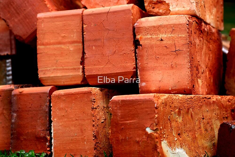 Basic Construction by Elba Parra