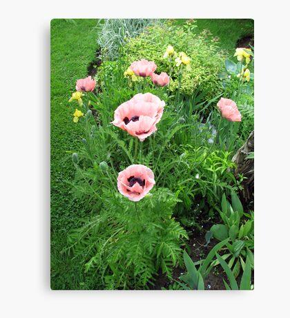 Gardeners Delight Canvas Print