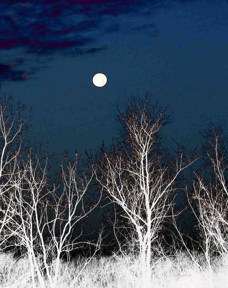 The Moon--Tarot Major Arcana by Myrddin