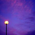 lamplight ... by SNAPPYDAVE