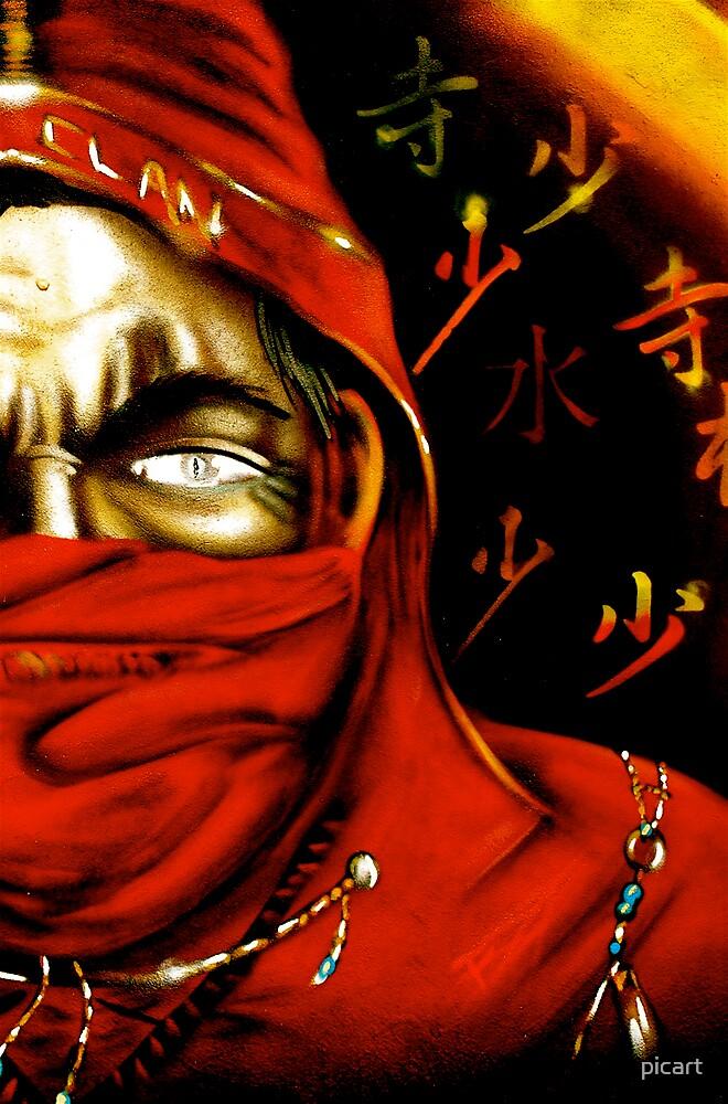 Red Ninja by picart