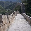 Beijing Great wall  by COLINxT
