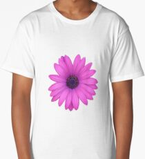 Pink African Daisy Isolated on A Black Background Long T-Shirt