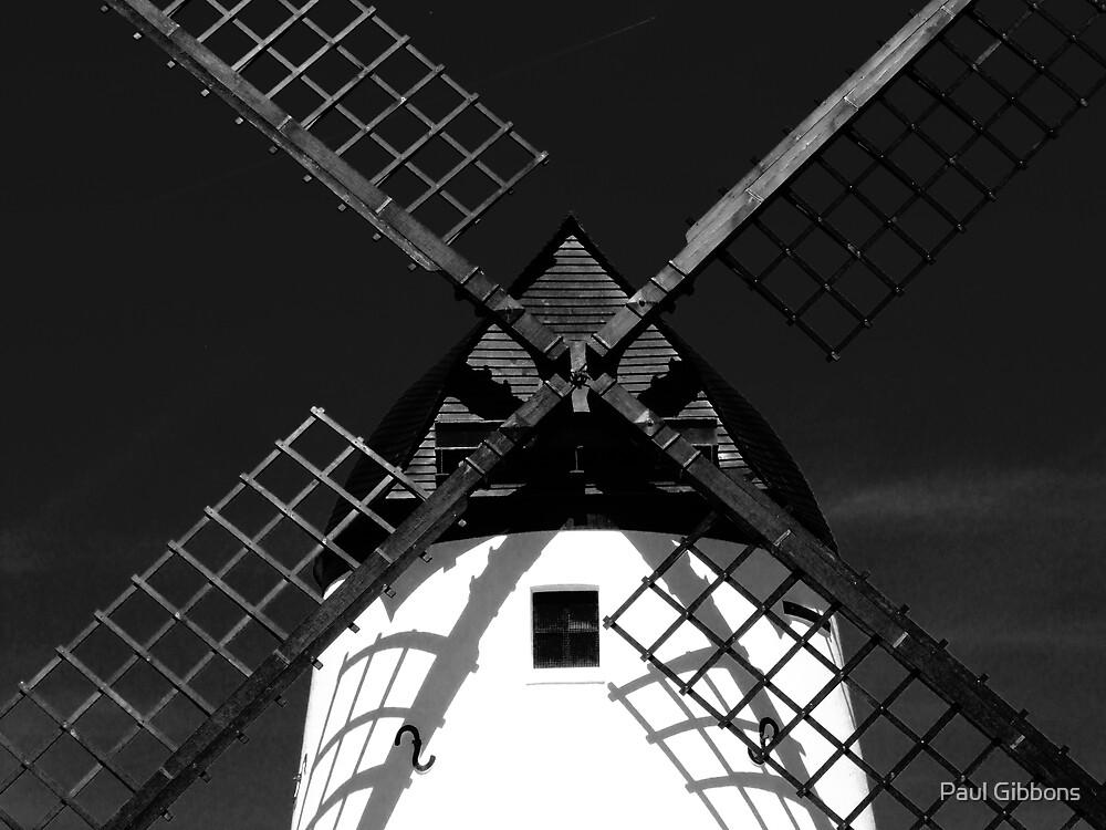 Tilting at Windmills by spottydog06