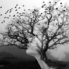 The Hostess Tree by © Kira Bodensted