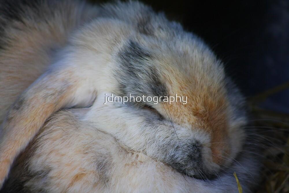 Shhhhhhhhhh ! by jdmphotography