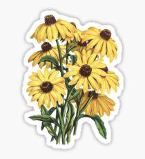 Black Eyed Susan Yellow Flowers Painting Art Sticker