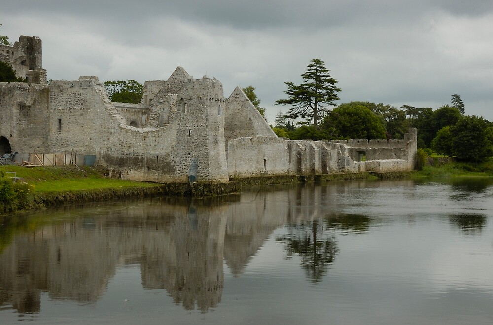 Desmond Castle in Adare by Charles Howarth