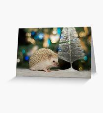A Hedgehog Christmas Greeting Card