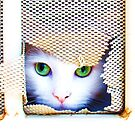 Here Kitty Kitty  by Goldie Lucarelli