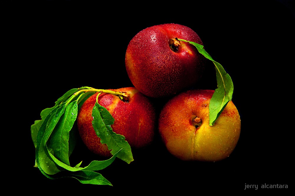 Peach by jerry  alcantara