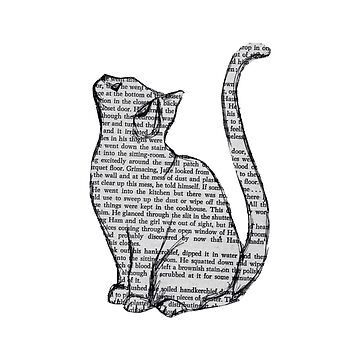Periódico Cat de effydev
