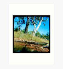 Milly's Creek  Art Print
