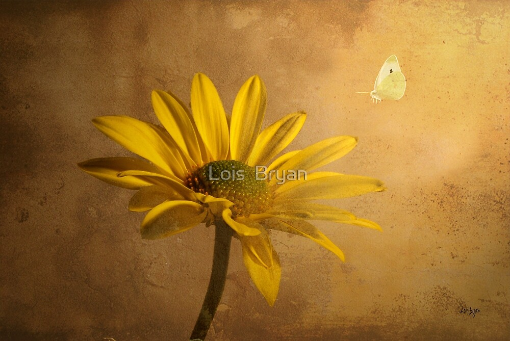 Expectant by Lois  Bryan