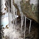 Droplets Frozen in Time  by Kimberly Chadwick