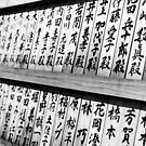 Writing on the wall - Tokyo Japan by Norman Repacholi