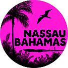 NASSAU BAHAMAS BEACH DIVING SNORKELING OCEAN CARIBBEAN SEA OCEAN LUGGAGE LAPTOP 3 by MyHandmadeSigns