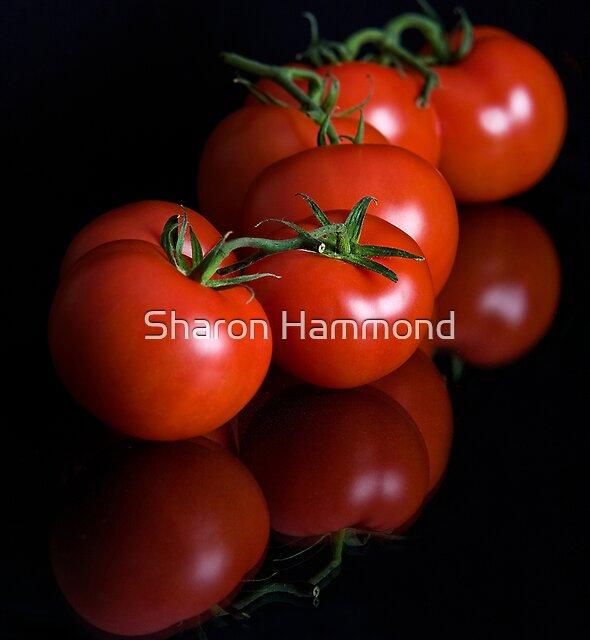 The Heinz Variety by Sharon Hammond