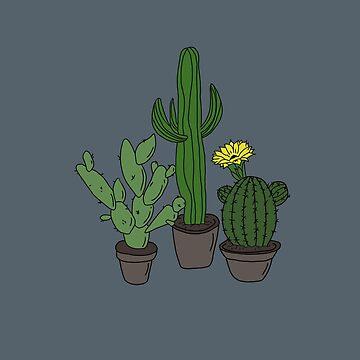 Linda planta de cactus de effydev