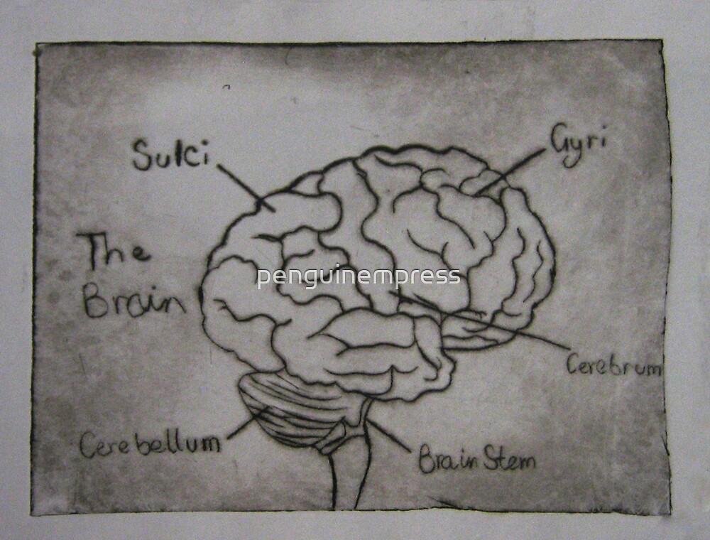 Brains by penguinempress