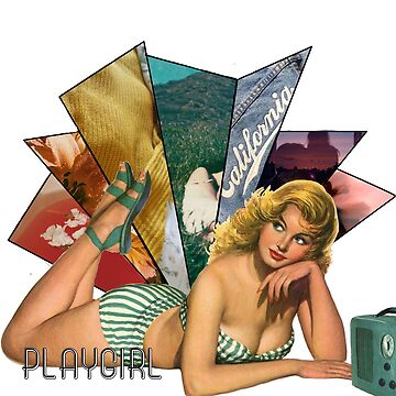 Playgirl pin up p1 (semi closet safe)  by Sunnysapphic