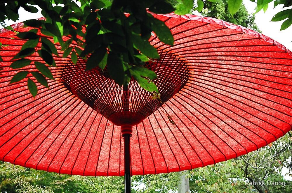 Japanese Umbrella  by Patrick Danoy