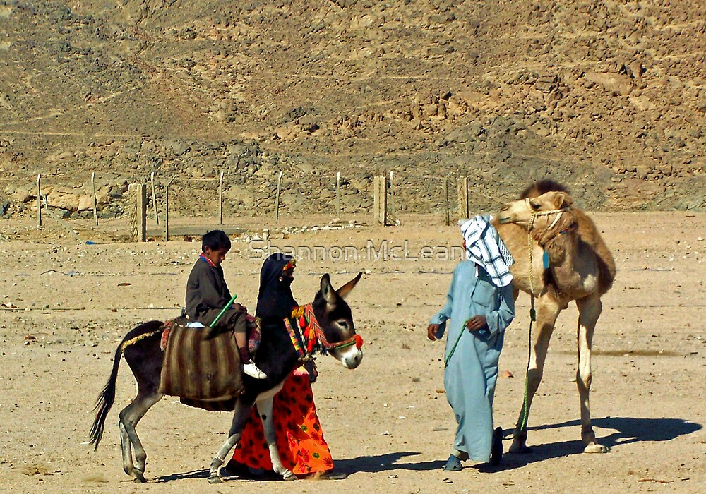 The Desert Family by shanmclean
